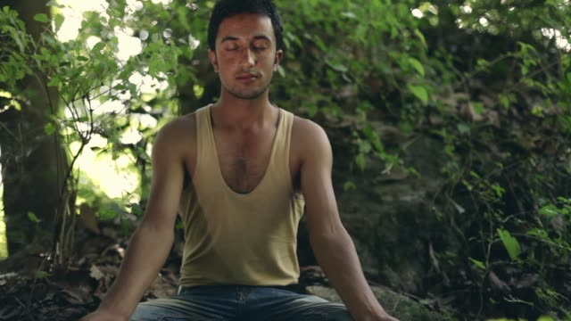 young man does yoga in woods. - vest stock videos & royalty-free footage