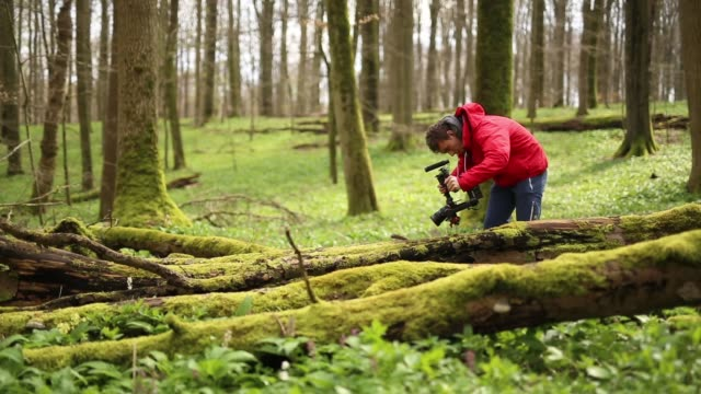young man films moss on fallen tree in forest - photography themes stock videos & royalty-free footage