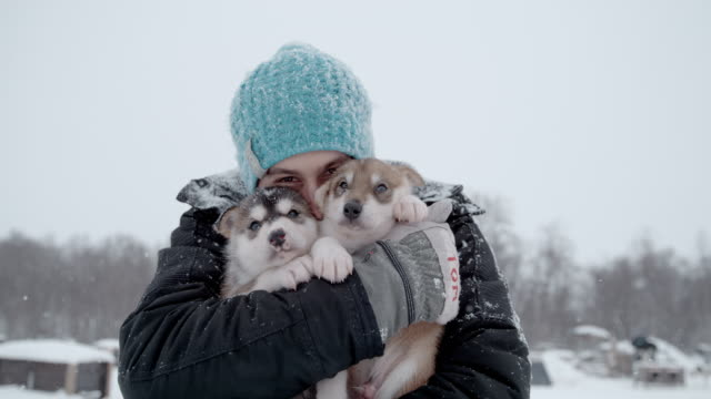 slo mo young man holding two adorable puppies in snow - sled dog stock videos & royalty-free footage