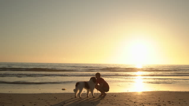 ws young man hugging his dog on the beach - einfaches leben stock-videos und b-roll-filmmaterial