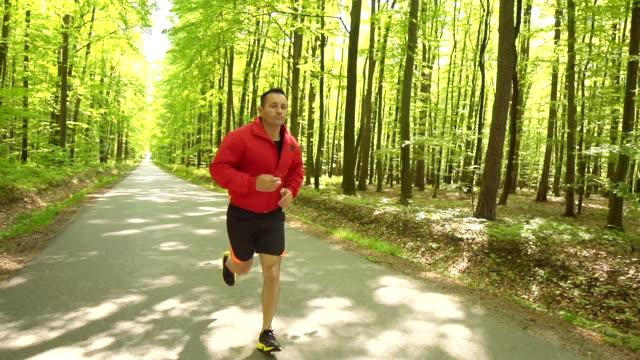 HD 安定: 若い男性のジョギングの森