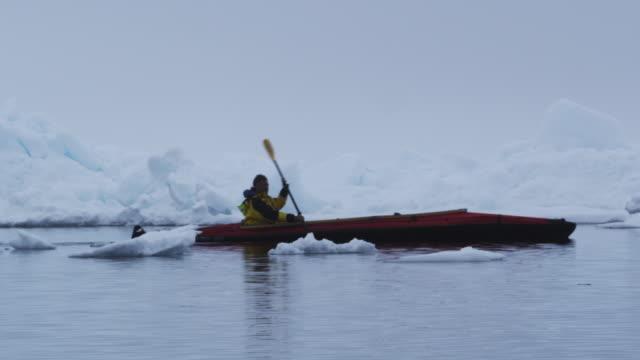 ws pan young man kayaking by iceberg / antarctica - kayaking stock videos and b-roll footage