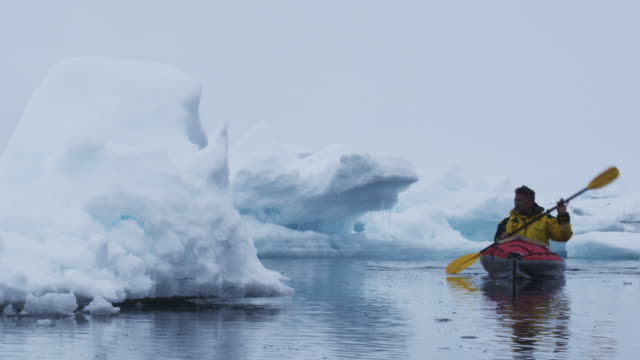 ws pan young man kayaking by iceberg / antarctica - kayak video stock e b–roll