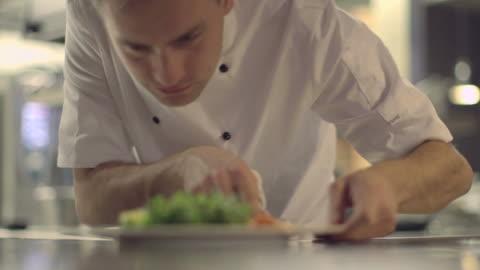 vidéos et rushes de ms r/f young man looking at menu card in restaurant - seulement des jeunes hommes