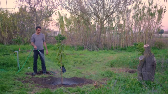 A young man making a hole for planting a tree