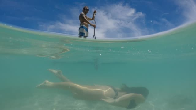 young man on a stand up paddle board paddle boarding while a young woman diving beneath him - rarotonga stock videos & royalty-free footage