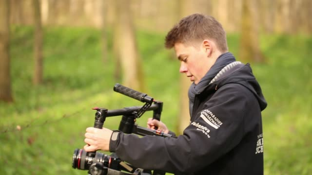 young man operates camera rig in forest - filming stock videos & royalty-free footage