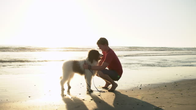 WS Young man petting his dog on the beach at sunset.