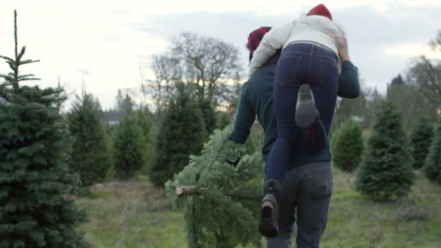 young man playfully carrying his wife and christmas tree - advent stock videos & royalty-free footage