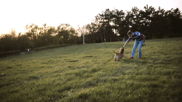 young man playing in medow with dog - pursuit sports competition format stock videos and b-roll footage