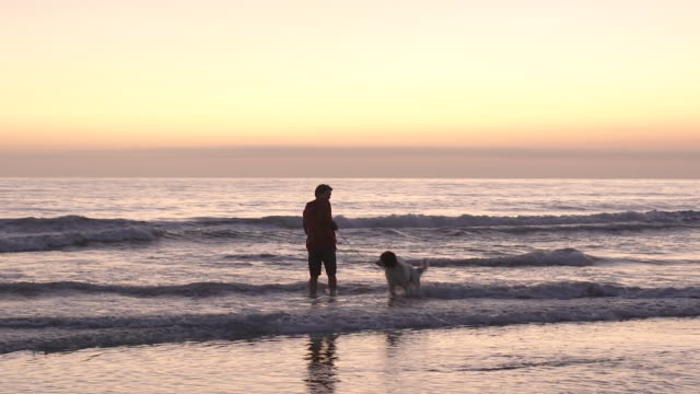 SM WS Young man playing with his dog in the water at the beach