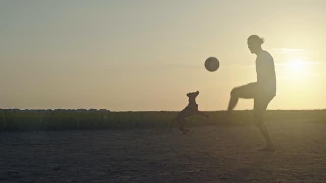 young man plays soccer with puppy in coastal marshland at sunrise. - badbyxor bildbanksvideor och videomaterial från bakom kulisserna