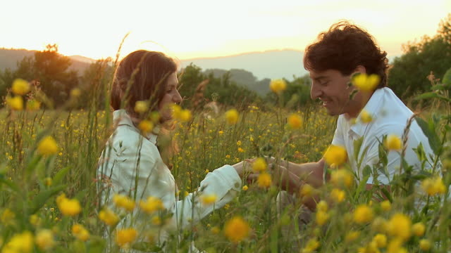 ms young man proposing woman in meadow at sunset / vrhnika, slovenia - vrhnika stock videos and b-roll footage