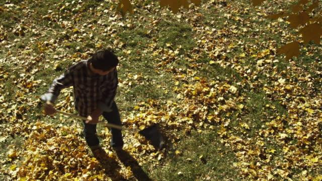 vídeos de stock e filmes b-roll de ws pan young man raking leaves while young woman throwing leaves / provo, utah, usa - ancinho equipamento de jardinagem