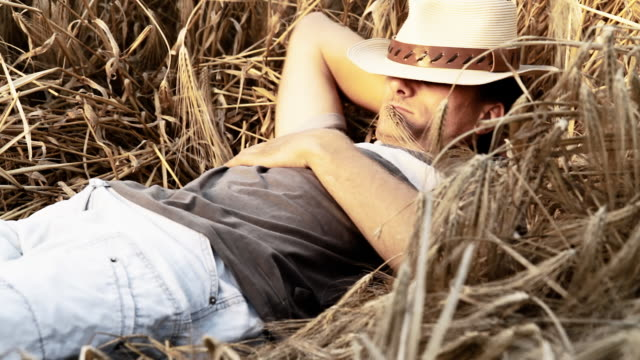hd: young man relaxing in wheat - straw hat stock videos and b-roll footage