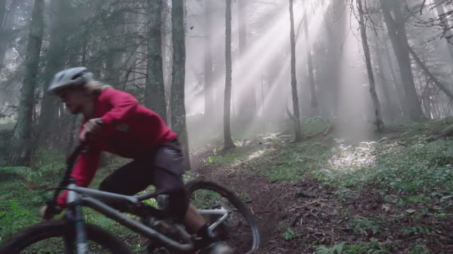 a young man riding a mountain bike, biking in a forest with the sun streaming through the trees. - mountain biking stock videos & royalty-free footage