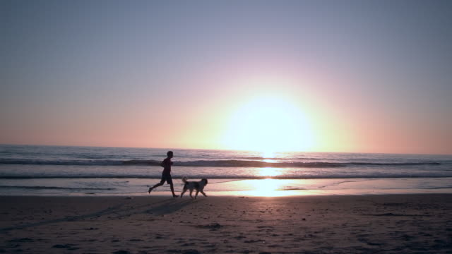 ws sm young man running on the beach with his dog - pet owner stock videos & royalty-free footage