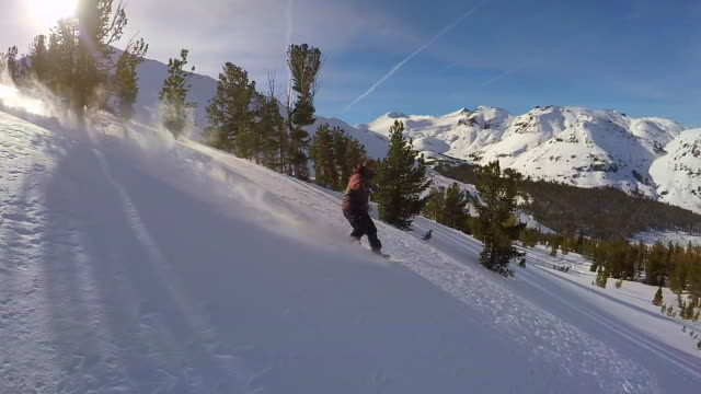 A young man snowboarding fresh power snow through trees in the mountains. - Slow Motion