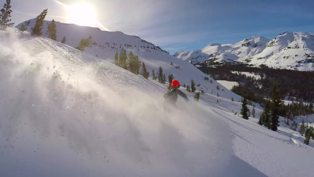 a young man snowboarding fresh power snow through trees in the mountains. - slow motion - cool und lässig stock-videos und b-roll-filmmaterial