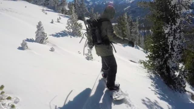 A young man snowboarding fresh power snow through trees in the mountains.