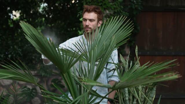 裏庭で水で植物をスプレー若い男 - 水撒き点の映像素材/bロール