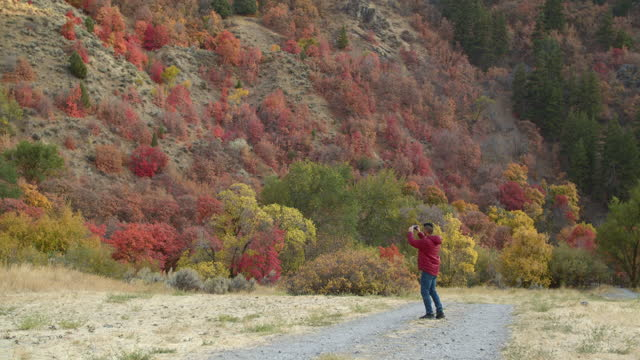 young man taking a photo of the trees in autumn - red stock videos & royalty-free footage