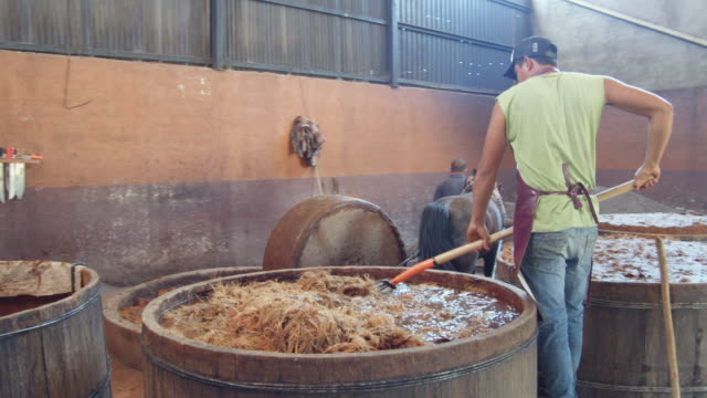 young man using pitchfork on frayed agave fermenting in wooden vat. mezcal homemade production - pitchfork agricultural equipment stock videos & royalty-free footage