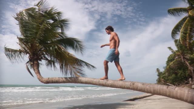 ws young man walking along palm tree trunk over beach and looking at ocean view/ scarborough, tobago, trinidad and tobago - サーフパンツ点の映像素材/bロール