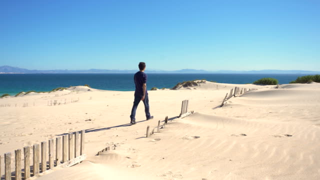 a young man walking in a dune sand with ocean and africa coast behind him - one mid adult man only stock videos & royalty-free footage