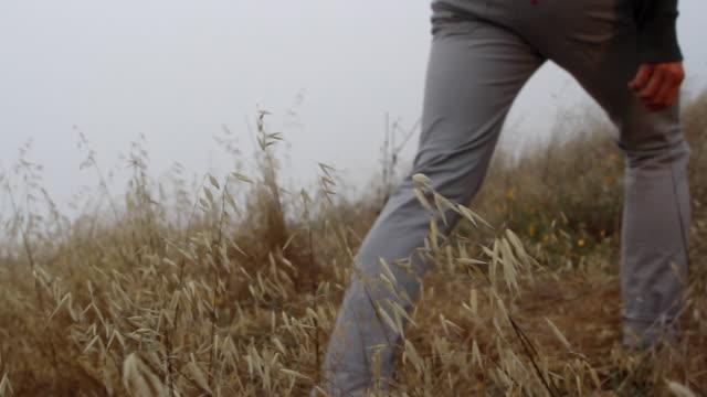 MS PAN SLO MO Young man walking up hill through wheat with dog following / Big Sur, California, USA