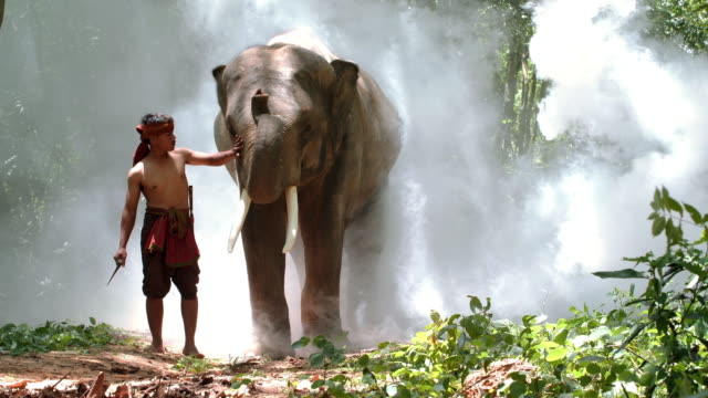 Young man walking with cute elephant.