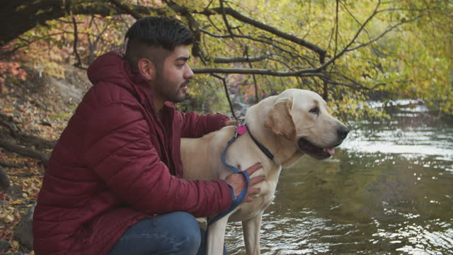 young man walking with his dog by a stream - stroking stock videos & royalty-free footage