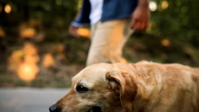 Junger Mann mit seinem Hund durch den Wald wandern