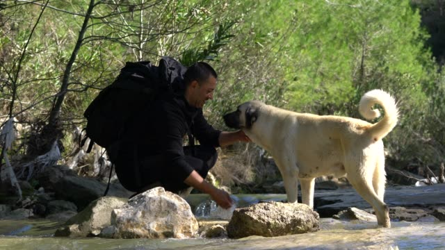 Young man washing her dog from mountain river