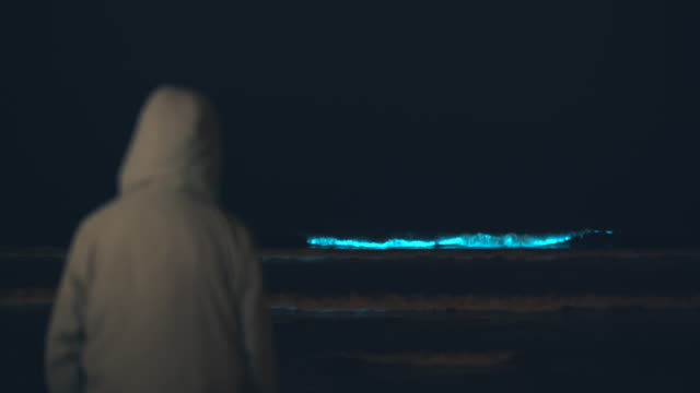 rv young man watches the bioluminescent phytoplankton turn the waves blue at night. - red tide stock videos & royalty-free footage