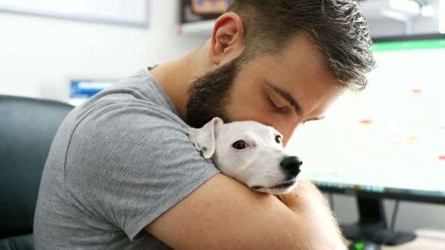 young man with a dog - bonding stock videos & royalty-free footage