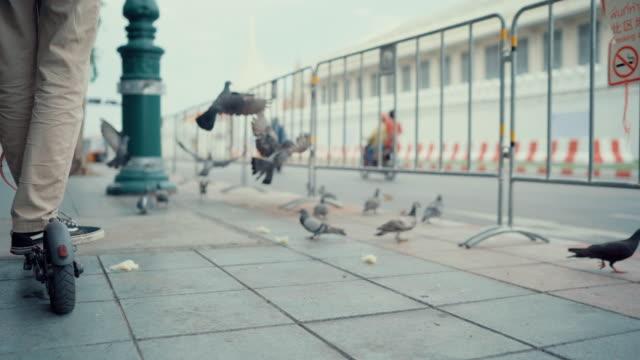 vídeos de stock e filmes b-roll de a young man with electric scooter - cidade inteligente