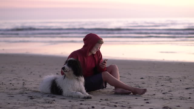 ws young man with his dog at the beach texting on his phone - 20 24 jahre stock-videos und b-roll-filmmaterial
