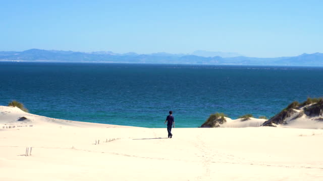 a young man with open arms from a dune sand with ocean and africa coast behind him - only mid adult men stock videos & royalty-free footage