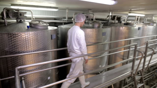 young man working at a dairy factory - storage tank stock videos & royalty-free footage