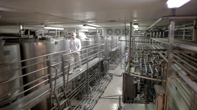 young man working at a dairy factory - tubo video stock e b–roll