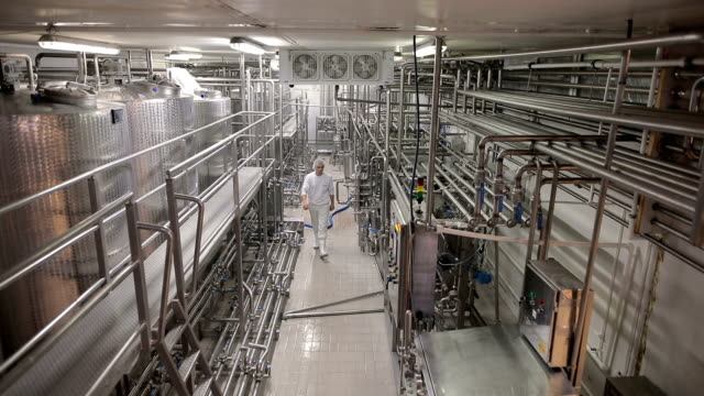 young man working at a dairy factory - dairy factory stock videos & royalty-free footage