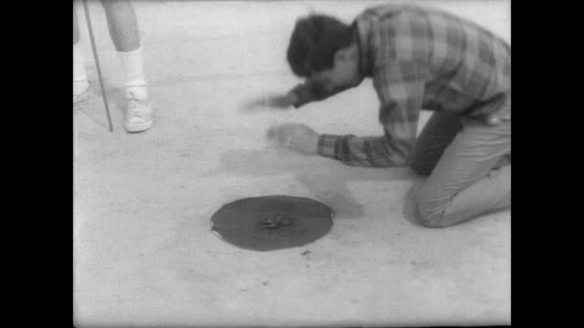 vidéos et rushes de young men and boys stand around a table in a park setting holding frogs / man slaps the ground next to frog in a circle to get it to jump / apathetic... - tape measure