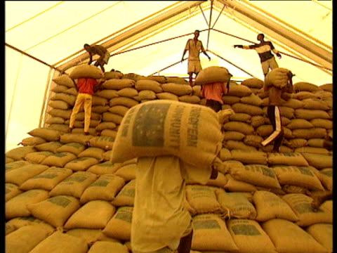 vídeos de stock e filmes b-roll de young men carry and stack bags of food aid into storage tent jan 00 - corno de áfrica