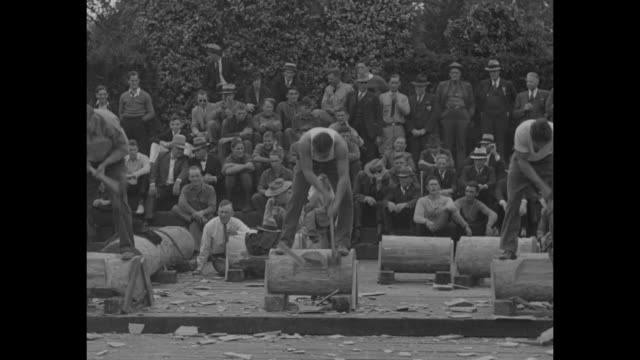 young men chop logs at the mountain state forest festival wood chopping contest, crowd looks on in background / vs man shaves another man with an ax... - lumberjack stock videos & royalty-free footage