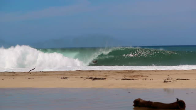 young men on a sandy beach with a bodyboarder catching a wave in the background - board shorts stock videos and b-roll footage