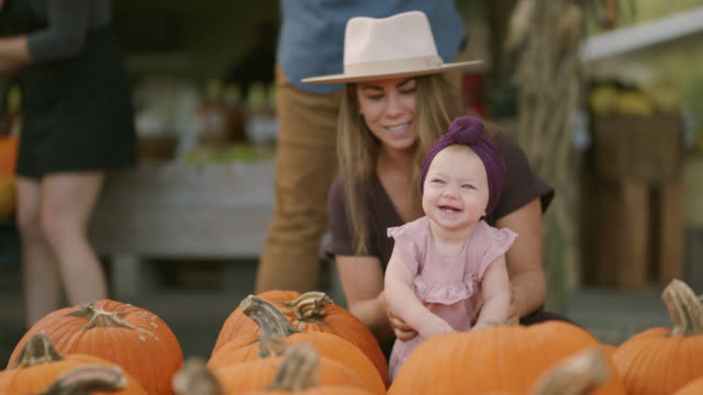 young millennial mother lets her baby play on pumpkins at a pumpkin patch - basket stock videos & royalty-free footage