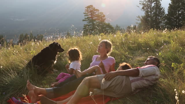 vidéos et rushes de young mixed race family look uwards from mtn meadow - être étendu