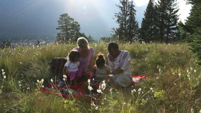 young mixed race family use digital tablet in mtn meadow - tempo reale video stock e b–roll