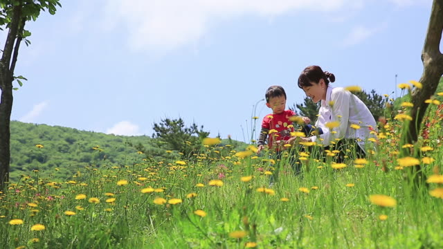 MS Young mother and child on picnic playing with flowers in woodland / Jeju, Jeju-do, South Korea